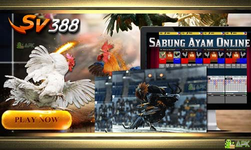 Cara Daftar SV388 Judi Adu Ayam Online | Situs Agen SV388